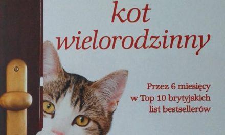 Alfie kot wielorodzinny – historia kota, który odmieniał ludzkie życia